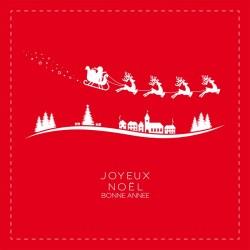 Carte Caméléon G-13 | Packaging personnalisé pour Noël - Innovant !