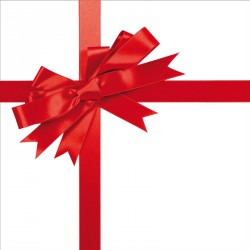 Carte Caméléon G-16 - Packaging personnalisé pour Noël