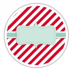 Boîte métallique Caméléon G-24 - Illustration ambiance sucre d'orge