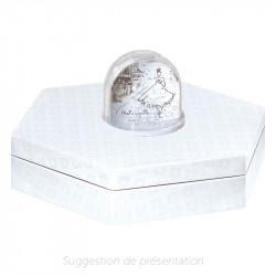 Boîte hexagonale Caméléon - Packaging  avec une boule à neige