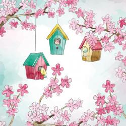 Packaging Nids d'oiseaux dans arbres en fleurs - Carte Caméléon C-12