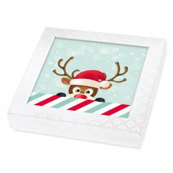 Boîte Caméléon G-21| Packaging personnalisé pour Noël - Innovant !