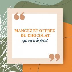 Packaging humoristique sur le thème du chocolat - Carte Caméléon B-15