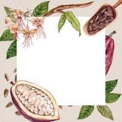 Carte Caméléon B-02 pour chocolatiers / pâtissiers