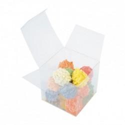 Cube Transparent