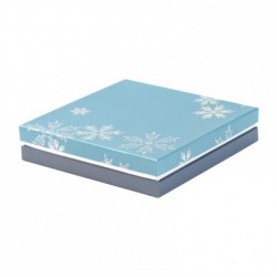 Déstockage - Boîte à gorge pour Noël - Du Bellay Étoile des Neiges