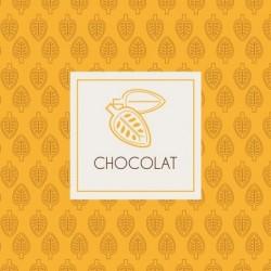 Carte Caméléon B-04 | Boutiques et Chocolat