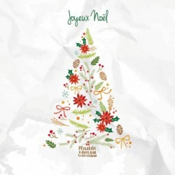 Packaging personnalisé - Carte Caméléon Illustration Joyeux Noël