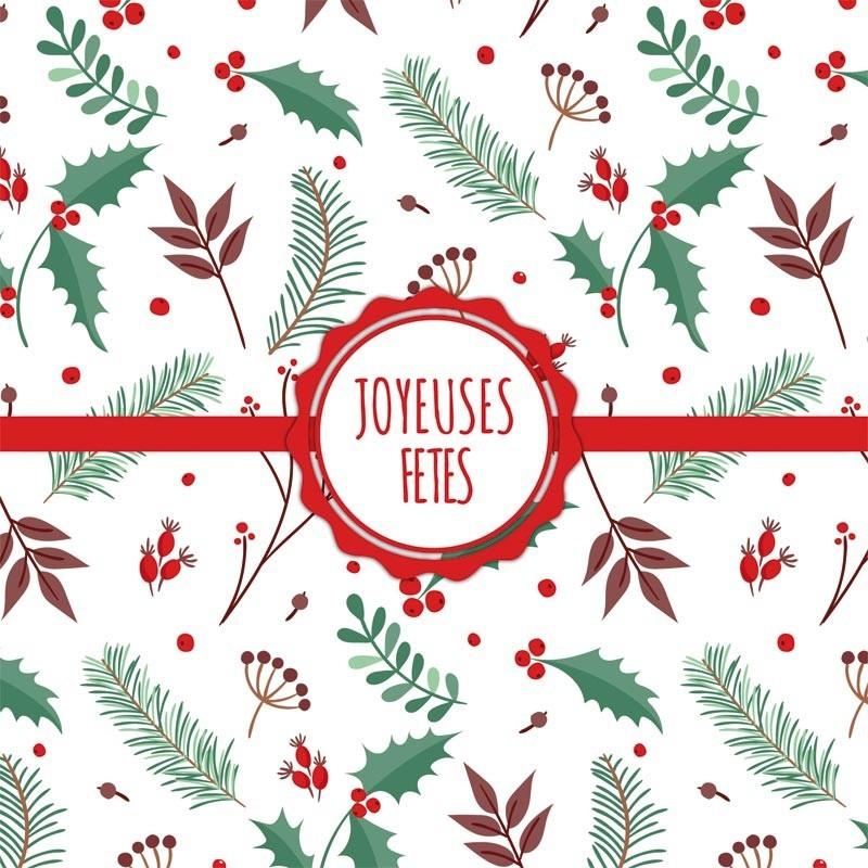 Packaging personnalisé - Carte Caméléon Houx & Joyeuses fêtes !