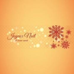Carte Caméléon Joyeux Noël et bonne Année - Packaging personnalisable