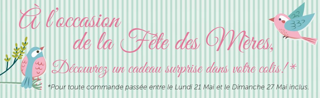 Un cadeau surprise pour toute commande à l'occasion de la fête des mères Embaline 2018 !